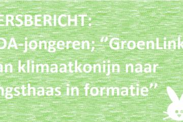 ccdja over angsthazen groenlinks