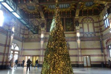 kerstboom station groningen